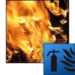 FDS. Fire dynamics simulator (FDS)